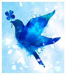 綺麗 青い鳥の画像26点完全無料画像検索のプリ画像bygmo