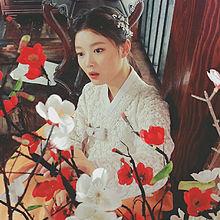 韓国系美人の画像(韓流に関連した画像)