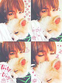 テテ&子犬の画像(プリ画像)