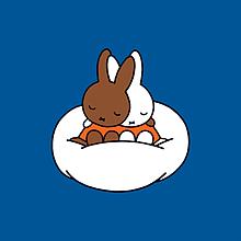 miffyの画像(miffyに関連した画像)
