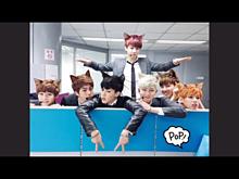 猫ちゃんバンタン💕の画像(プリ画像)