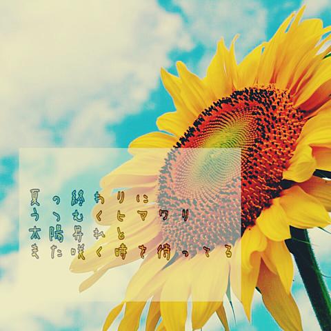 コブクロ 願いの詩の画像(プリ画像)