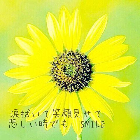 嵐 虹のカケラ~no rain no rainbow ...