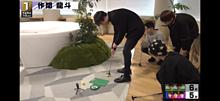 作間龍斗 室内ゴルフ はいちゅーぶの画像(ゴルフに関連した画像)