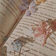 book.の画像(bookに関連した画像)
