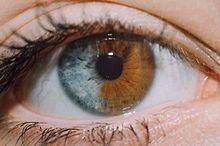 eye. プリ画像