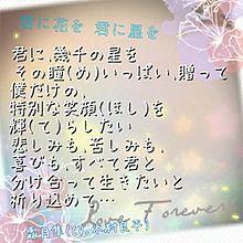 君に花を 君に星を 歌詞画の画像(プリ画像)