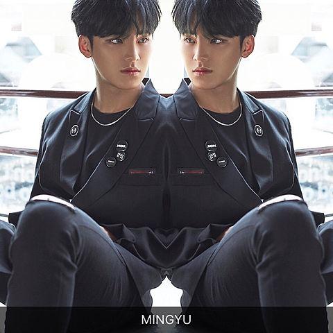 MINGYU - TEEN, AGE -の画像(プリ画像)