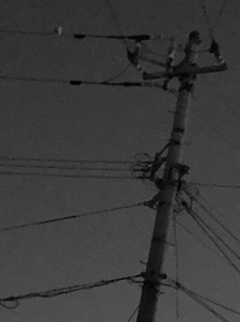 Noirの画像(NOIRに関連した画像)