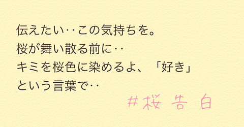 #桜告白の画像(プリ画像)