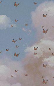 butterflyの画像(アメリカン・アメリカ・Americaに関連した画像)