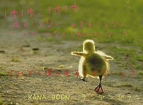 KANA-BOON  ランアンドランの画像(プリ画像)