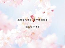 サクラ咲け . 。の画像(プリ画像)