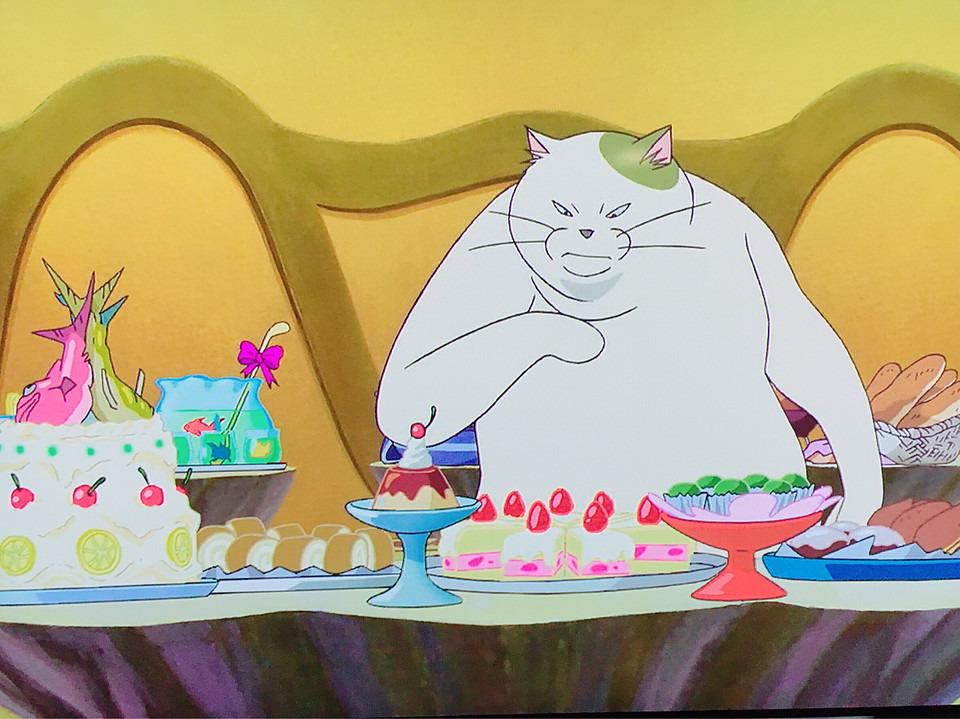 猫の恩返し 食べ物を見るムタ