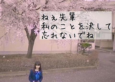 さよならの季節 歌詞画の画像(プリ画像)