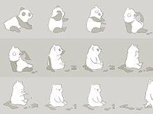 パンダ→しろくまの画像(プリ画像)