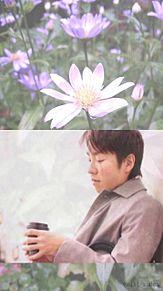 関ジャニ∞ with spring flowersの画像(Springに関連した画像)
