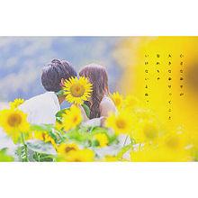 夏袴の気まぐれの画像(女の子/男の子に関連した画像)
