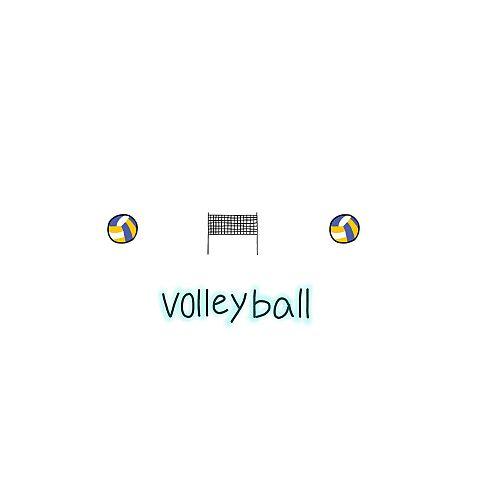 バレーボールの画像 プリ画像