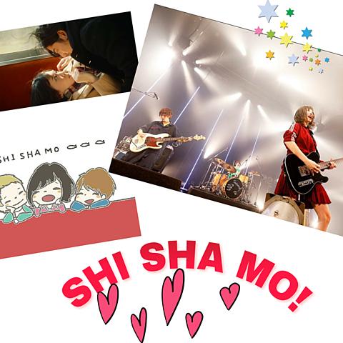 SHISHAMOの画像(プリ画像)