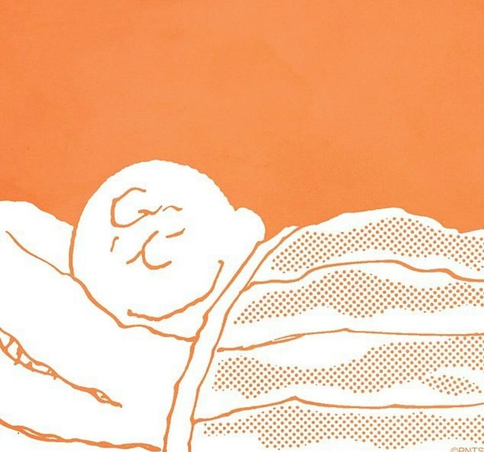 眠るチャーリーブラウン壁紙