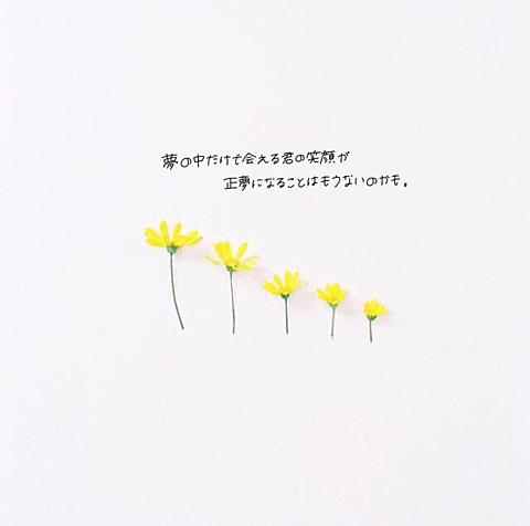 my memory / DISH//の画像(プリ画像)