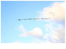 0611の画像(青空/彼氏彼女/友達/青い鳥に関連した画像)