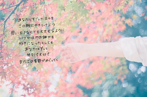 ガーネット / 奥華子の画像(プリ画像)