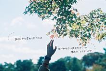 0621の画像(青空/彼氏彼女/友達/青い鳥に関連した画像)