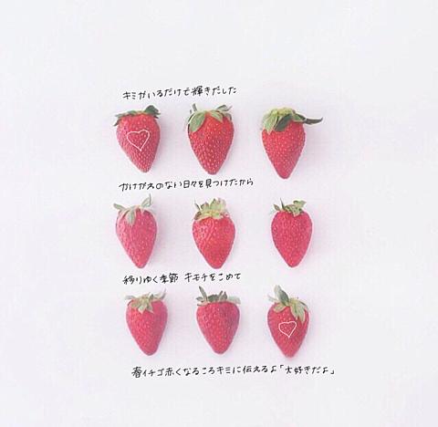 春イチゴ / DISH//の画像(プリ画像)