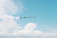 0625の画像(青空/彼氏彼女/友達/青い鳥に関連した画像)