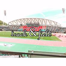 陸上競技場(熊本)の画像(熊本に関連した画像)