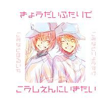 ダイヤのA小湊兄弟の画像(小湊春市に関連した画像)