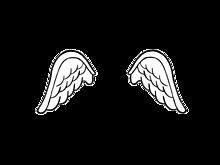 羽【背景透明】の画像(プリ画像)