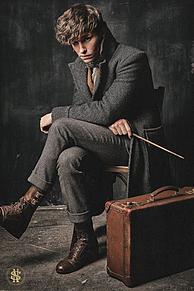 Eddie Redmayneの画像(ハリーポッターに関連した画像)