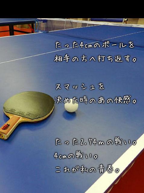 卓球。の画像(プリ画像)