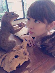 渡辺美優紀の画像(チームBに関連した画像)