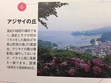 山田孝之の画像(世界の中心で愛をさけぶに関連した画像)