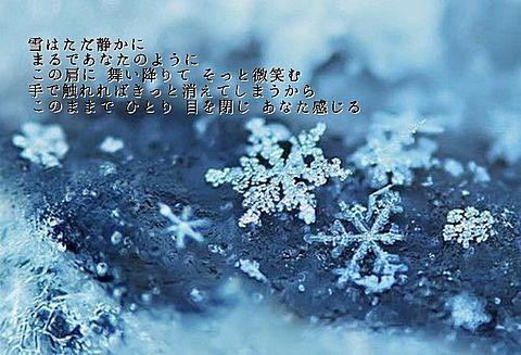 Dear Snowの画像(プリ画像)