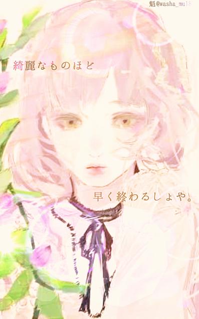 チャンわか♡詳細必読→の画像(プリ画像)