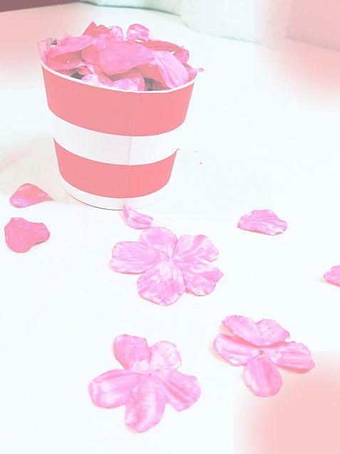 花びらチークの画像(プリ画像)
