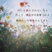 歌詞画像の画像(ヨルシカに関連した画像)