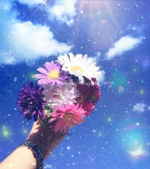 花の画像 プリ画像