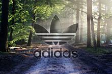 adidasの画像(半透明に関連した画像)