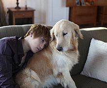 ジェジュンと…イヌの画像(プリ画像)