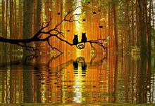 半透明 秋 秋色 猫 黒猫 森 シルエット 素材 背景の画像(半透明に関連した画像)