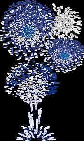 背景透過  花火  打ち上げ花火  カラフルの画像(花火大会に関連した画像)