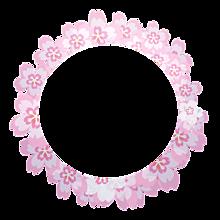 背景透過  フレーム  飾り枠  桜の画像(枠 ピンクに関連した画像)