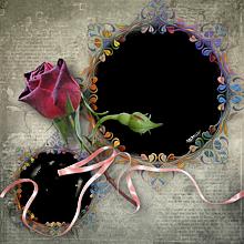 部分透過  フレーム  薔薇  バラ プリ画像