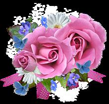 背景透過  薔薇🌹  バラ  ローズの画像(大人ガーリーに関連した画像)